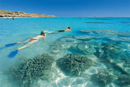 Ningaloo Reef Resort - Townsville Tourism