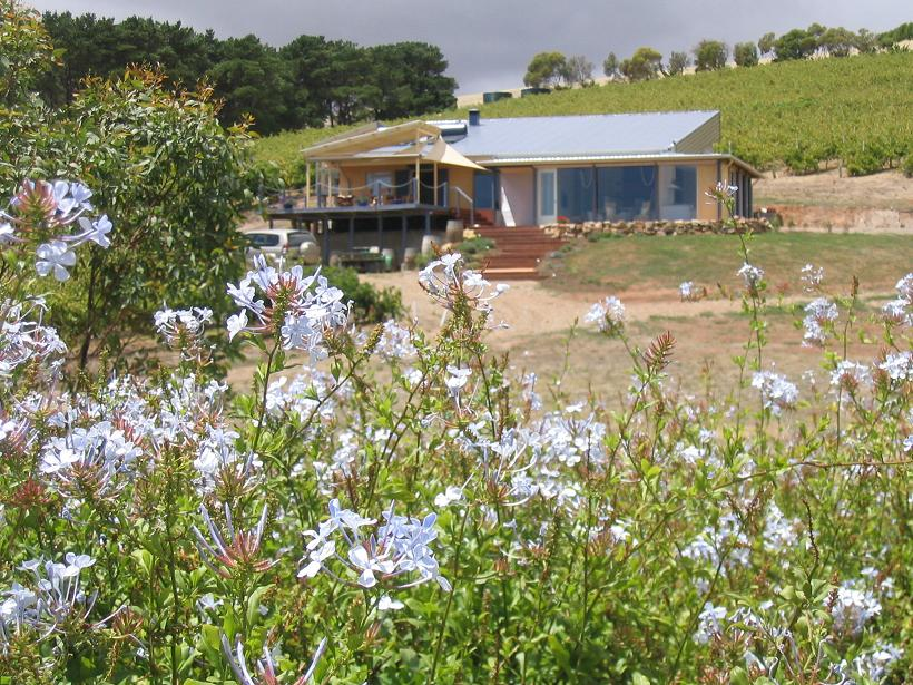 The Blue Grape Vineyard Accommodation - Townsville Tourism