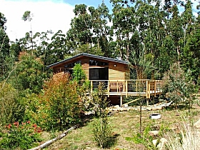 Southern Forest Accommodation - Townsville Tourism