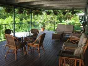 Daintree Riverview - Townsville Tourism