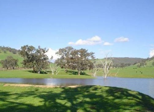 Hillview Farmstay - Townsville Tourism