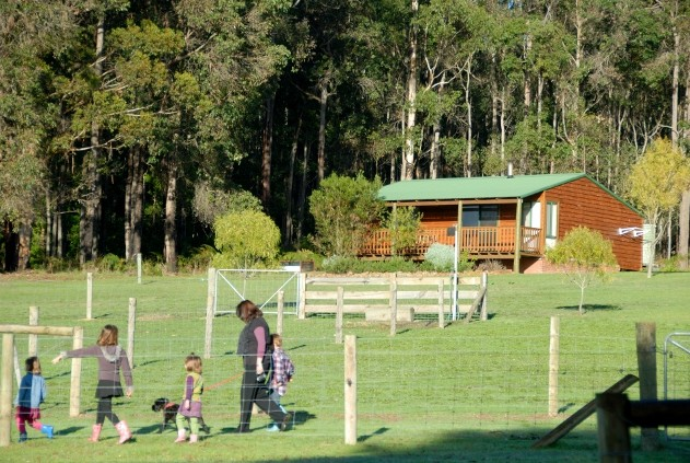 Diamond Forest Farm Stay - Townsville Tourism