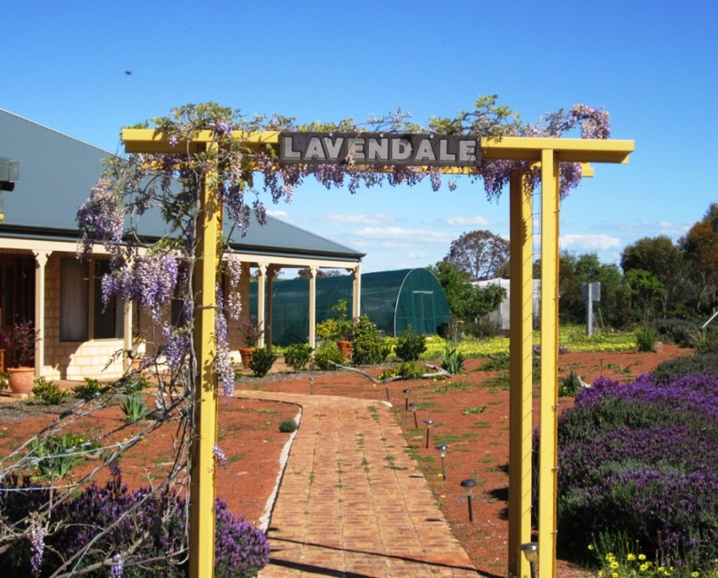 Lavendale Farmstay and Cottages - Townsville Tourism