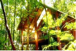The Canopy Treehouses - Townsville Tourism