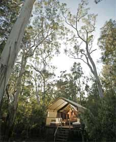 Paperbark Camp - Townsville Tourism