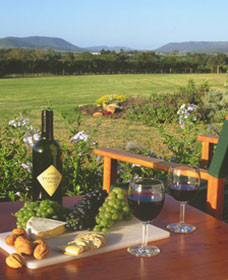 Tranquil Vale Vineyard Cottages - Townsville Tourism
