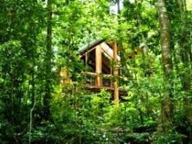 Fur'N'Feathers Rainforest Tree Houses - Townsville Tourism