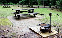 Bellbird campground - Townsville Tourism