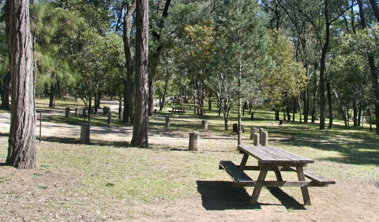 Lemon Tree Flat campground - Townsville Tourism