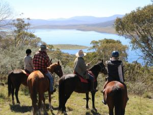 Reynella Homestead and Horseback Rides - Townsville Tourism