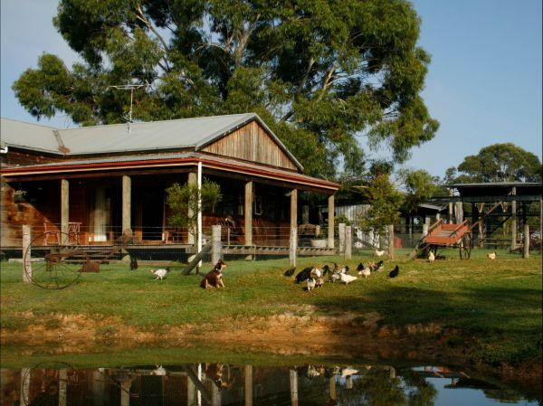 Tobruk Sydney Farm Stay - Townsville Tourism