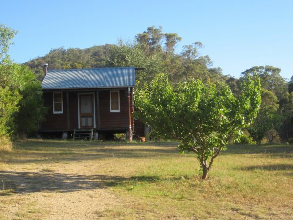 Peach Tree Cabin - Townsville Tourism