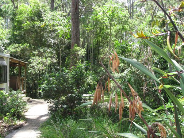 Dunns Creek Downs Nature Stay - Townsville Tourism
