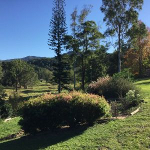 The Croft Bed and Breakfast - Townsville Tourism