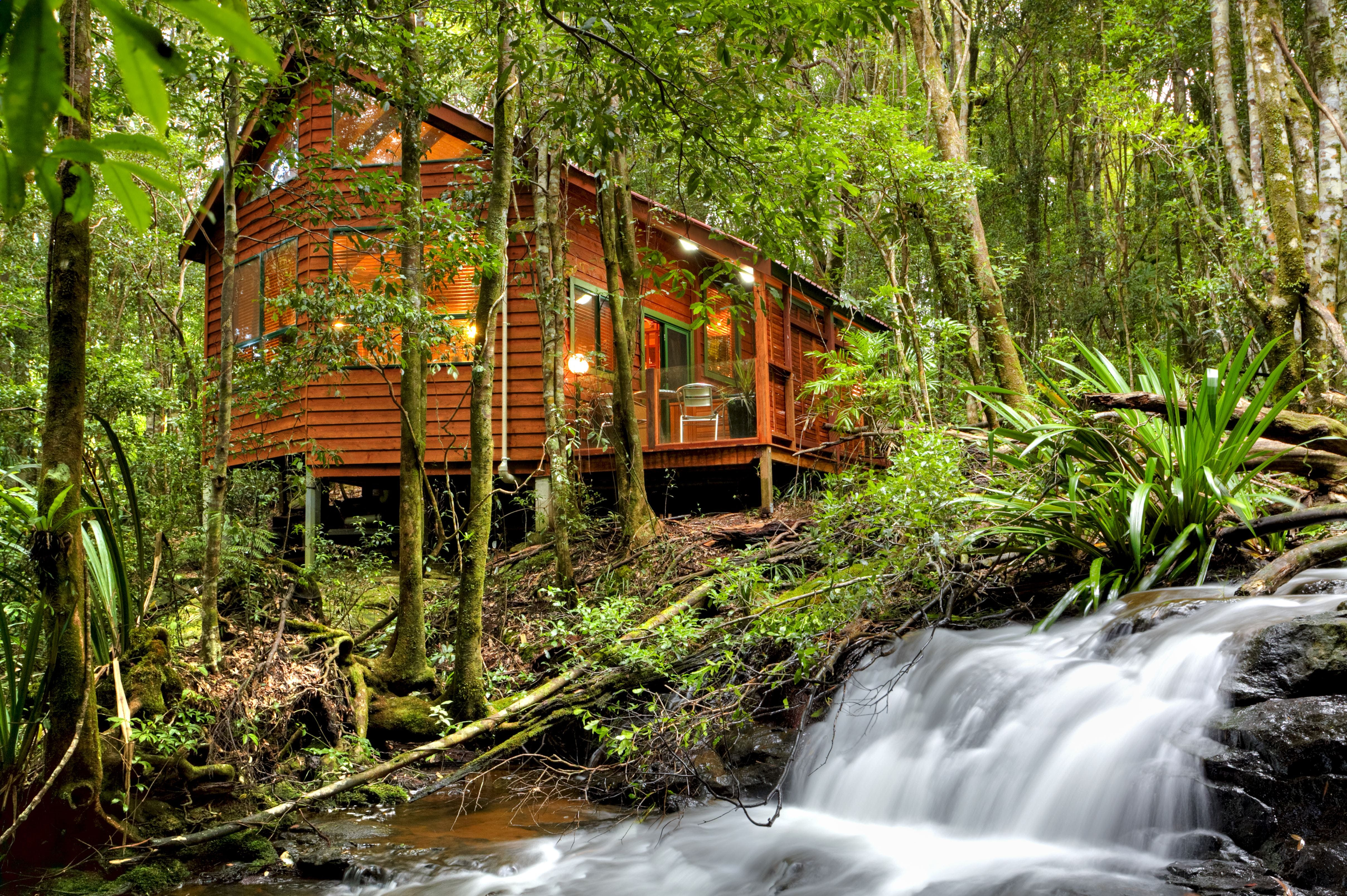 The Mouses House - Rainforest Retreat - Townsville Tourism