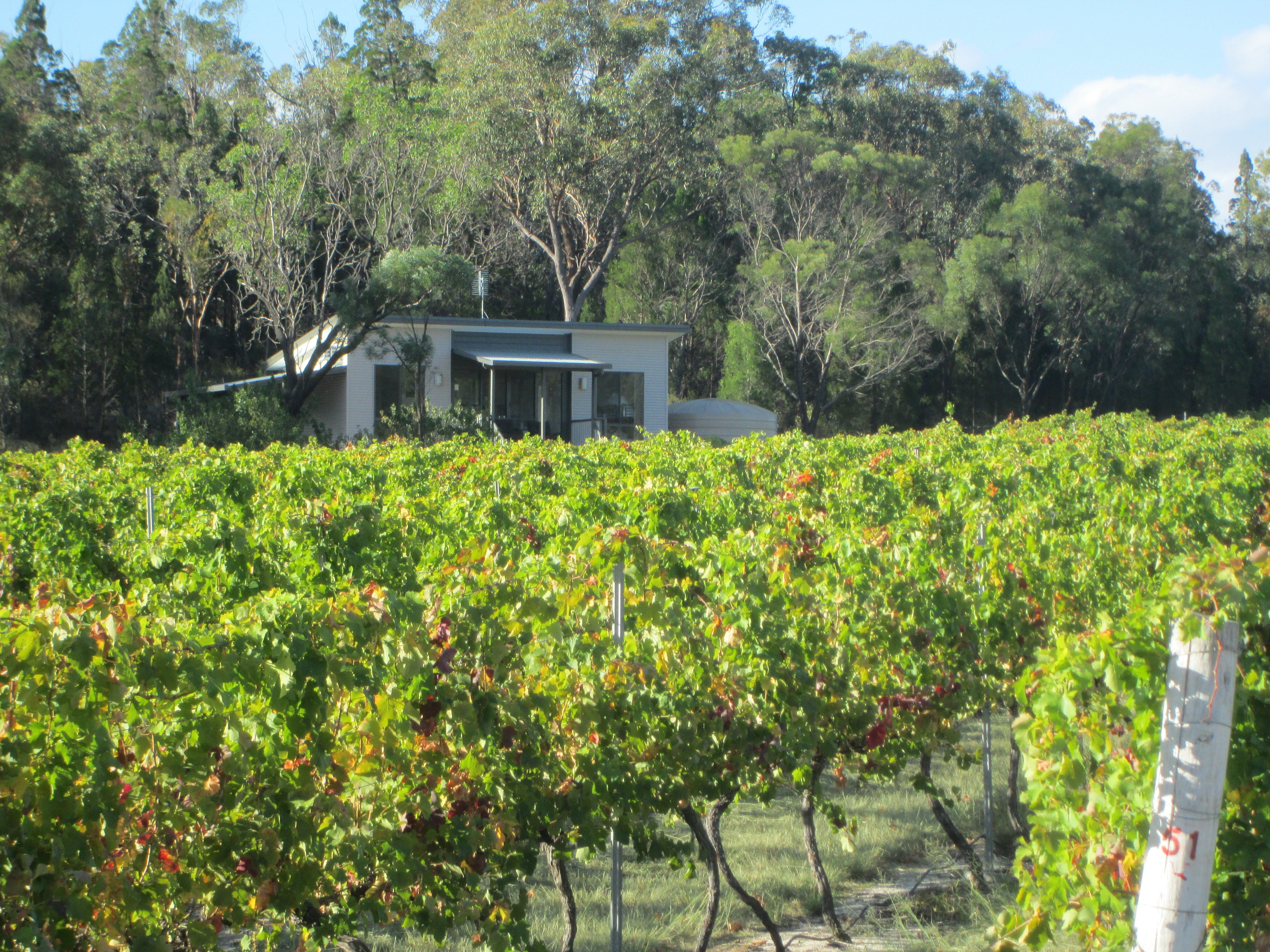 Just Red Wines Vineyard Cabins - Townsville Tourism