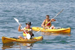 Manly Kayaks - Townsville Tourism