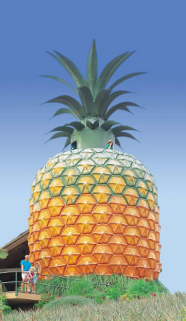 The Big Pineapple - Townsville Tourism