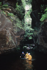High And Wild Mountain Adventures - Townsville Tourism