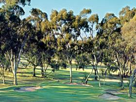 Tanunda Pines Golf Club - Townsville Tourism