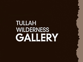 Tullah Wilderness Gallery - Townsville Tourism