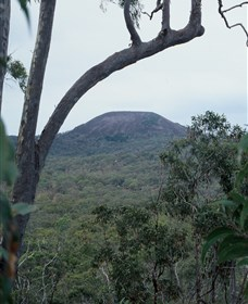 Mount Fox - Townsville Tourism