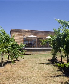 Shantell Vineyard - Townsville Tourism