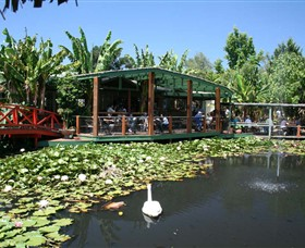 Blue Lotus Water Garden - Townsville Tourism