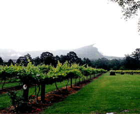 Cambewarra Estate Wines - Townsville Tourism