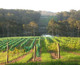 Tilba Valley Wines - Townsville Tourism