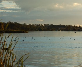 Lake Inverell Reserve - Townsville Tourism