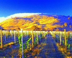 Surveyors Hill Winery - Townsville Tourism