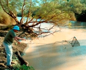 Charleville - Ward River Fishing Spot - Townsville Tourism