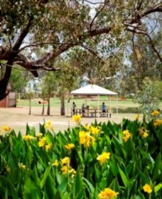 Charleville - Graham Andrews Parklands - Townsville Tourism