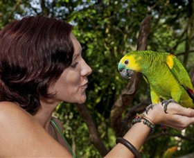 Birdworld Kuranda - Townsville Tourism