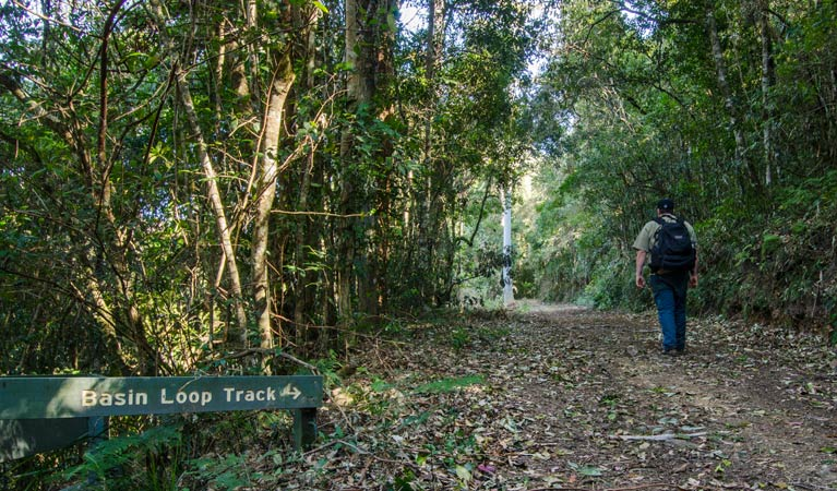 Basin Loop track - Townsville Tourism