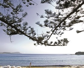 Terrigal Beach - Townsville Tourism