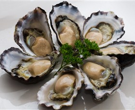 Tathra Oysters - Townsville Tourism