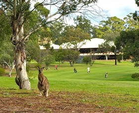 Pambula Merimbula Golf Club - Townsville Tourism