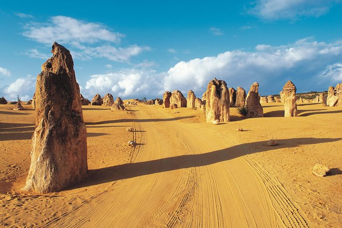 Pinnacles Desert Koalas and Sandboarding 4WD Day Tour from Perth - Townsville Tourism
