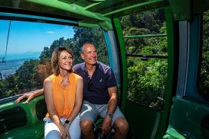 Skyrail Rainforest Cableway Day Trip from Palm Cove - Townsville Tourism
