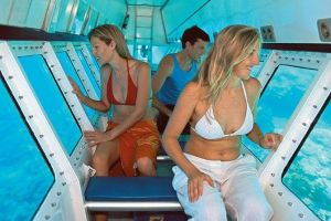 Quicksilver Outer Great Barrier Reef Snorkel Cruise from Palm Cove - Townsville Tourism