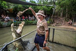 Hartley's Crocodile Adventures Day Trip from Cairns - Townsville Tourism