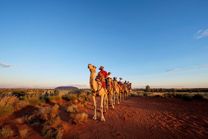 Uluru Camel Express Sunrise or Sunset Tours - Townsville Tourism
