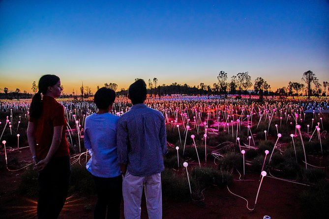 Uluru Field of Light Sunrise Tour - Townsville Tourism