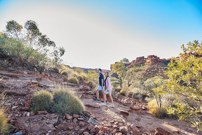 Kings Canyon Guided Rim Walk - Townsville Tourism