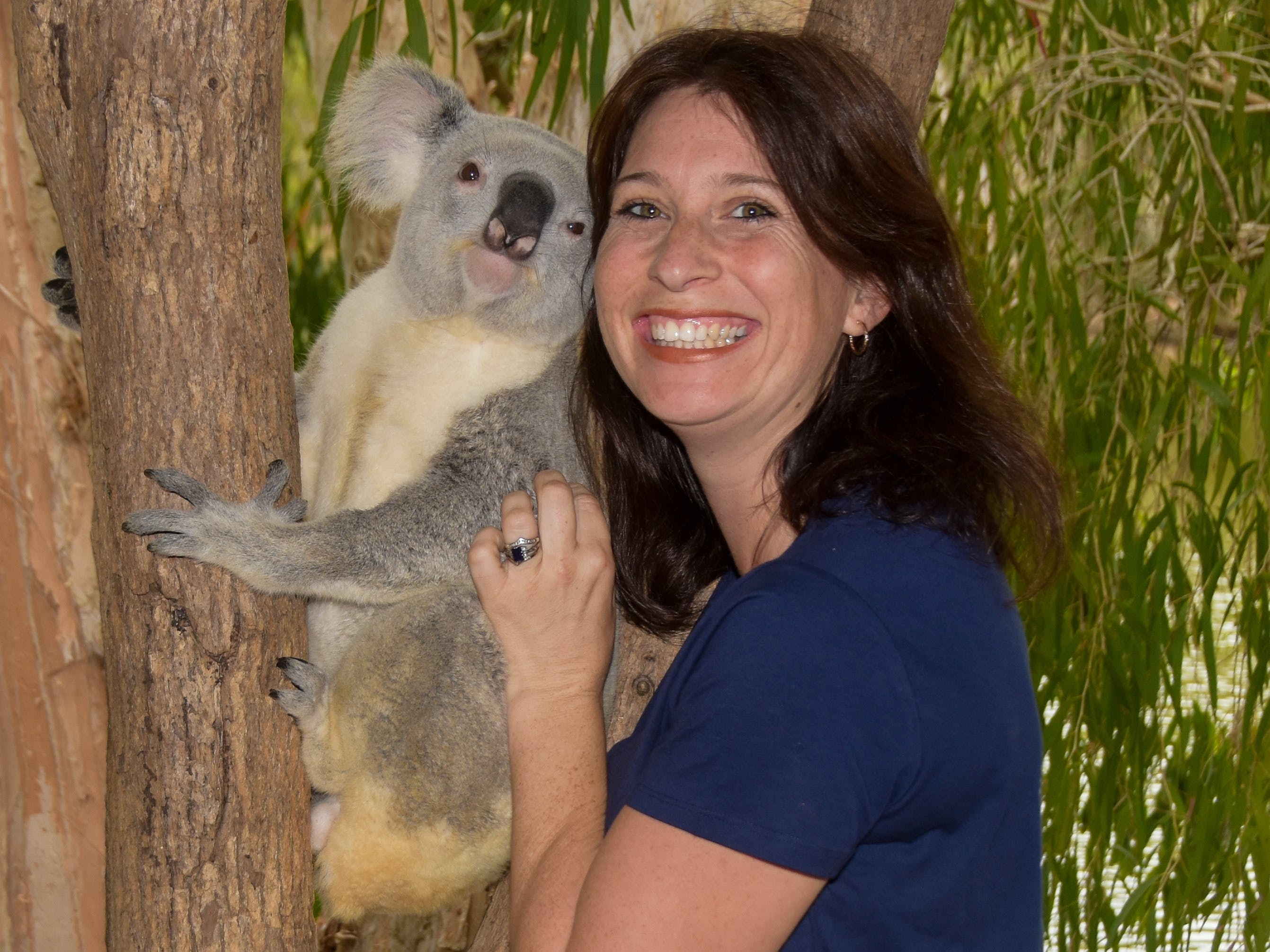 Billabong Sanctuary - Townsville Tourism