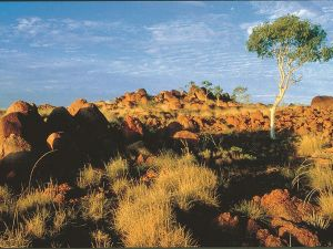 Kunjarra/The Pebbles - Townsville Tourism
