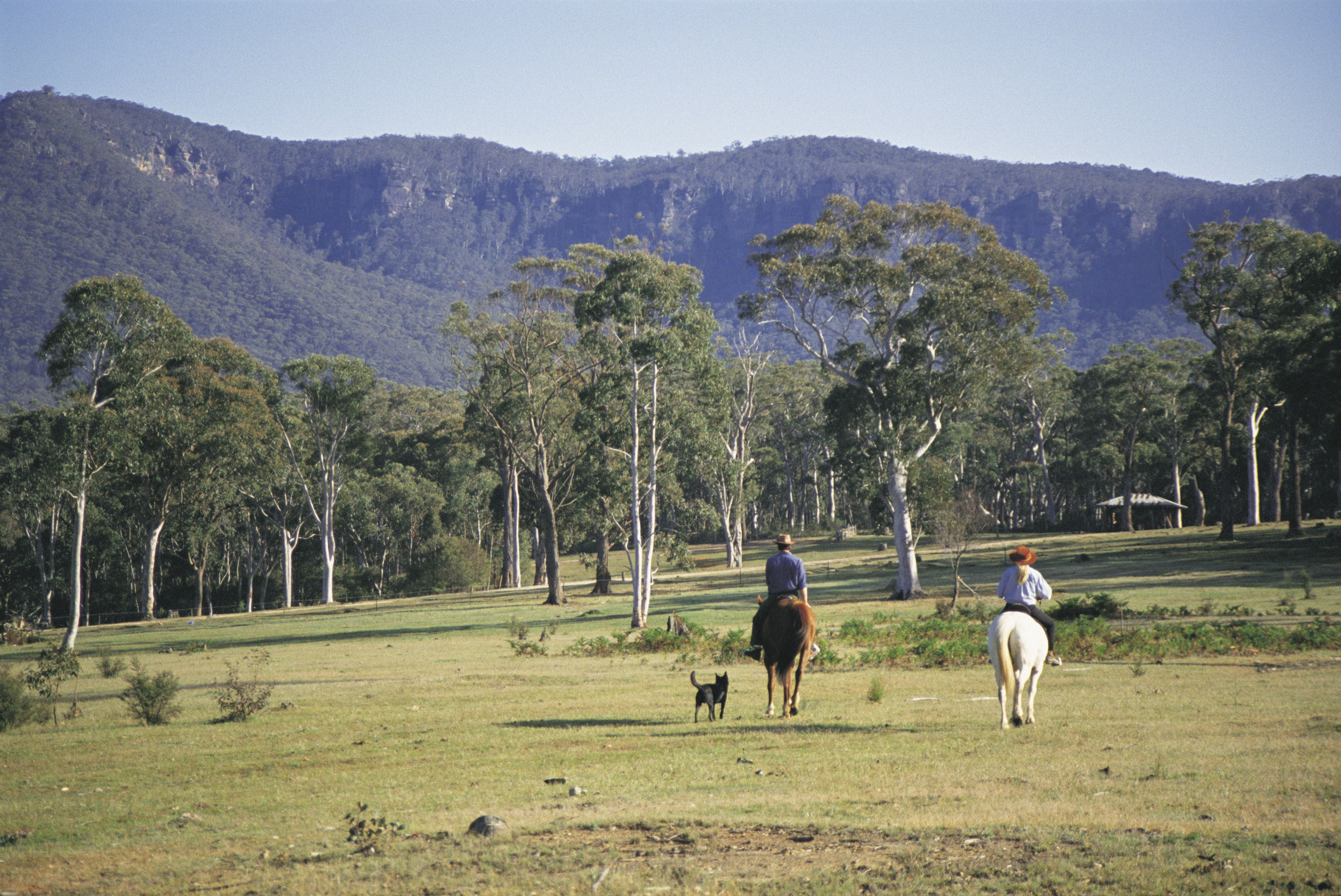 Megalong Valley - Townsville Tourism