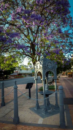 Witcombe Fountain - Townsville Tourism